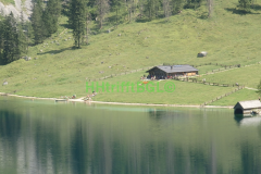 Oberseee Fischunkelalm (3)